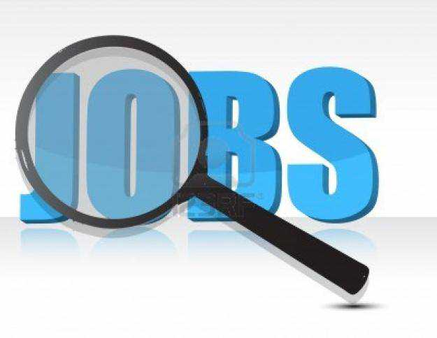 JOB VACANCIES: Medical Director at The Federal Ministry of Health and 48 other jobs